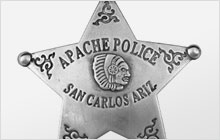 A photo of a sheriff's badge